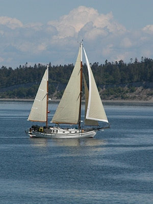 A sailboat moves through the calm waters of Penn Cove.